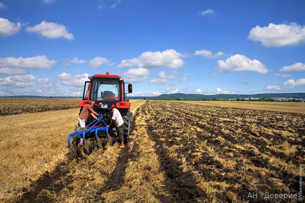 купить землю в Хабаровске